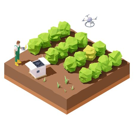 Vector isometric agricultural drone inspecting crop field