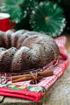 Chocolate Christmas cake photo