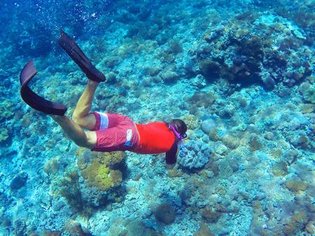 warm water fish: Snorkeler and coral reef, Bali sea, Indonesia
