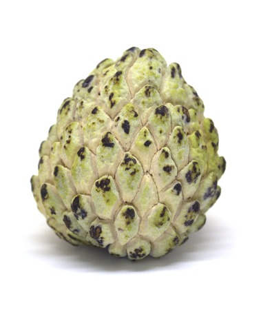 Custard apple isolated on white background. Annona cherimola photo in lightbox. Unusual tropical fruit with green color and pine texture. Sweet tropical dessert. Sugar apple exotic fruit. Eatable pine