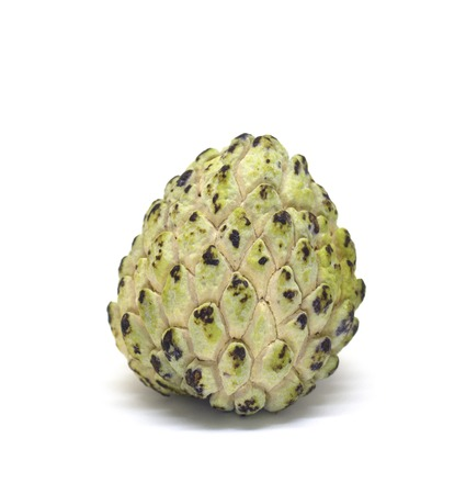 Custard apple isolated on white background. Annona cherimoya photo in lightbox. Unusual tropical fruit with green color and pine texture. Sweet tropical dessert. Sugar apple exotic fruit. Eatable pine