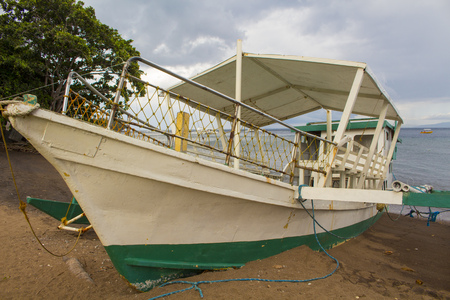 White passenger boat on a beach sand. Small catamaran parked on a seashore. Sea transport for tourists. Seaside landscape with motor ship and green tree. Nautical transportation. Marine travel image