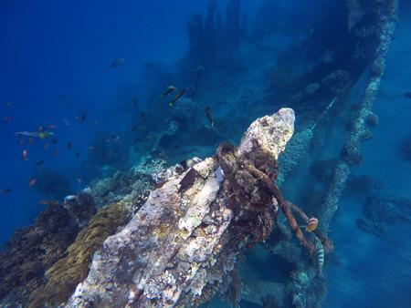 Shipwrecks in Bali sea, Amed snorkeling, snorkeling in Bali, vacation in Bali, impressive sightseens in Bali, sport activity Bali island, tropic sea snorkeling, holiday diving in the sea, Indonesia Stock Photo