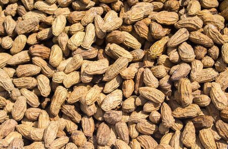 ourdoor: Peanuts pile under sunlight. Rustic nut photo for wallpaper or background. Dry peanuts closeup. Asian food market ourdoor eatery. Rich protein nutrition. Dry peanuts in shells. Vegetarian snack image Stock Photo