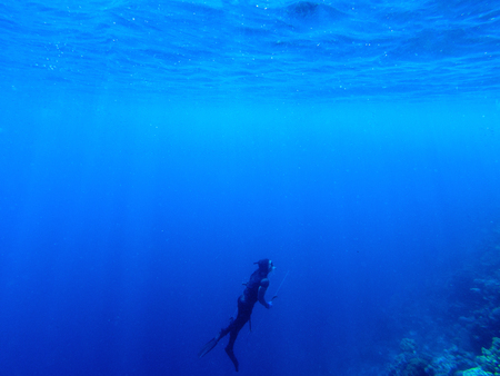 padi: Diver underwater in deep blue sea. Man in diving gear dives up to water surface. Open water diving lesson. Beautiful ocean with sun rays in water. Diver man silhouette undersea photo. Seawater view Stock Photo