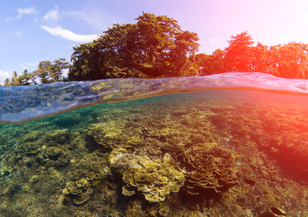 Double landscape with sea and sky. Seascape split photo. Tropical island greenery. Underwater coral reef. Above and below waterline seaview. Exotic seashore sunset. Pink sun flare. Sea water lagoon
