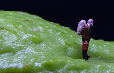 Old man figure walking on fruit skin. Senior traveler figurine on rough exotic vegetable. Senior man healthy diet concept. Active lifestyle in elderly age. Aged backpacker on asian vegetable chayote