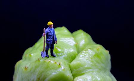 Figure worker on exotic fruit. Tropical fruit rough surface. Garden worker figurine on rough terrain. Digging ditch concept photo. Road worker job scene macro photo. Worker in helmet with shovel model