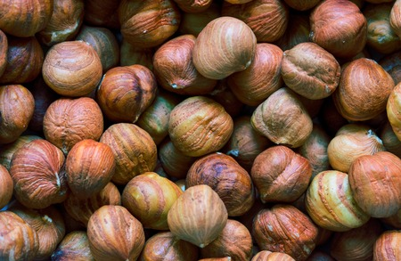 Hazelnut heap closeup. Hazelnut close photo background. Organic food rustic banner template. Healthy snack. Scattered nuts on table top view. Hazel nut flat lay. Hazelnut texture for package design