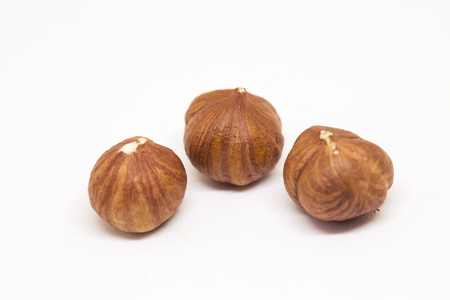 Hazelnut isolated on white background. Three ripe nut closeup photo. Simple organic food. Tasty healthy snack package design. Scattered hazelnut clipart. Hazel banner template with text place