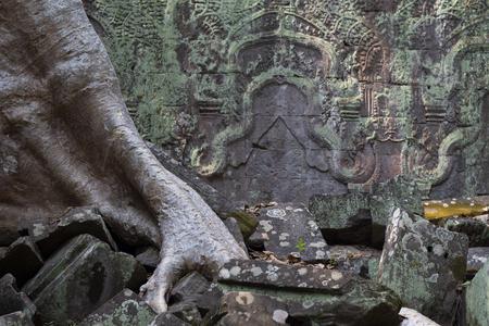 Ancient ruin of Ta Prohm temple, Angkor Wat complex, Siem Reap, Cambodia.