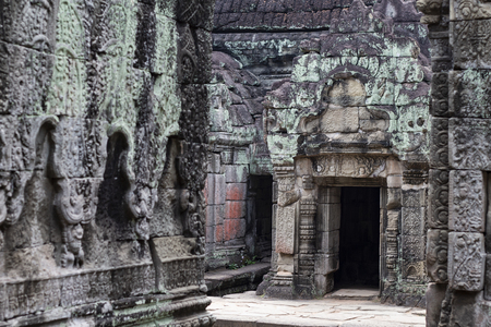 Ancient temple in Angkor Wat. Preah Khan temple mossy stone bas-relief ornament. Buddhist or hindu temple. Khmer architecture heritage. Tourist place of interest in Cambodia. Asia travel sightseeing