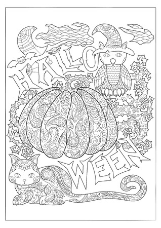 Halloween black and white vector coloring page with owl in magician hat, cat and pumpkin. Outlined pumpkin with floral pattern. Creepy cute Halloween characters. Halloween pumpkin for adult coloring Illustration