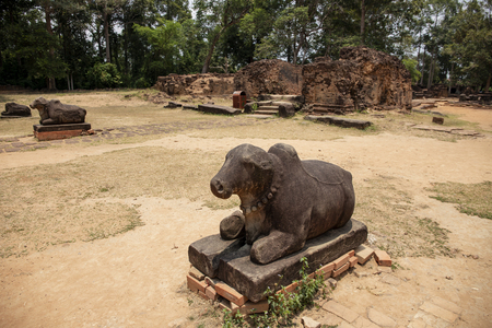 Ancient temple stone monument in Angkor Wat complex, Cambodia. Sacred cow statue. Nandi bull. Hindu temple sculpture. Ancient stone carved animal figure. Hinduist architecture. Asian travel photo