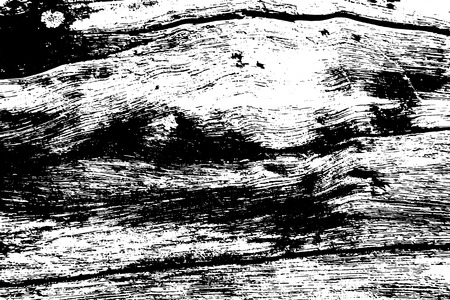Black and white old wood texture. Rustic timber surface traced vector background. Tree trunk natural texture. Lumber monochrome ornament. Grungy distressed foreground. Noisy vintage effect overlay