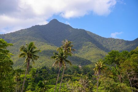 Tropical landscape with greenery and mountains in sunny day. Stock Photo
