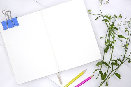 Sketchbook blank page with green leaf and pencil. Open notebook top view photo on white background.