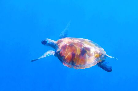 Green turtle in sun beam undersea. Sea turtle in blue water digital illustration. Green turtle underwater. Tropical seashore wildlife. Wild marine tortoise in natural environment. Animal of coral reef