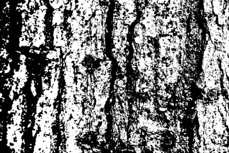 Grungy wooden texture vector on transparent background. Aged tree bark ornament. Dark wooden bark textured overlay for vintage effect. Weathered and rough surface with grit and noise. Timber texture Stock Illustratie