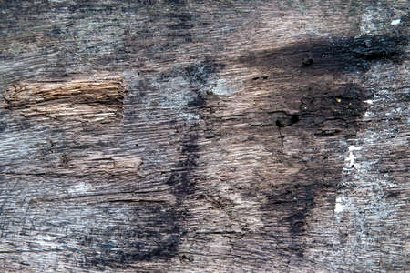 Natural wooden texture closeup. Weathered timber with fire marks. Natural background for vintage design. Rustic wood backdrop. Wooden table top view. Grungy lumber flat lay. Distressed gray wood