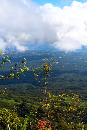 Mountain landscape with forest and cloud. Mountain top view vertical photo. Summer landscape with blooming trees and distant sea. Hiking in mountains. Tropical island panoramic view