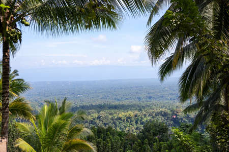 Coco palm tree natural frame on tropical island landscape. Tropical forest palm leaf view with distant ocean. Tropical nature environment. Untouched wild forest. Mountain top view. Hiking in tropics Banque d'images