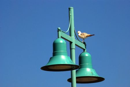 A Gull Stands Atop A Lampost Stock Photo