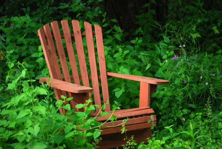 adirondack chair: Old Chair in an Overgrown Wildflower Garden