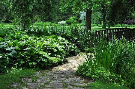 Botanical Garden Featuring Large Hosta Plants Stock Photo