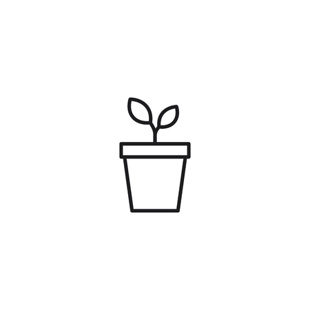 thin line plant in pot icon on white background