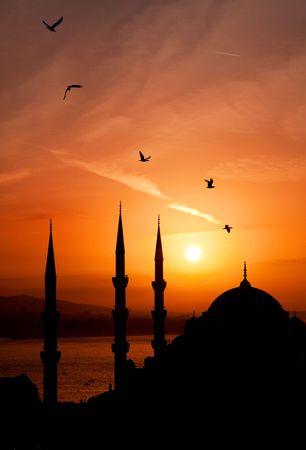 Minarets de nuit d'Istanbul
