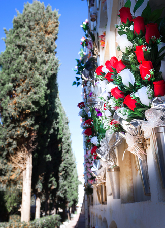 Flowers in the cemetery near the wall with the burial, path, bouquet, cypress Banque d'images - 92472731