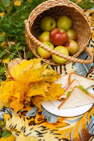 picnic with sandwiches and a basket of apples in the autumn garden. Yellow autumn colors Reklamní fotografie - 132124926