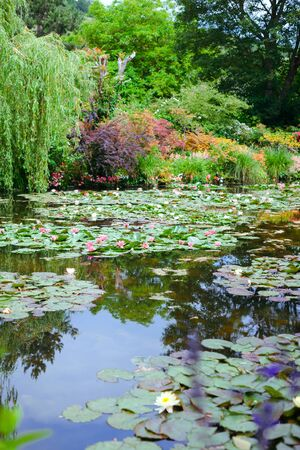 Giverny. France. flowers in Monets garden.