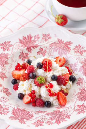 dessert with fresh berries on a red vintage plate. Farm cottage cheese Reklamní fotografie
