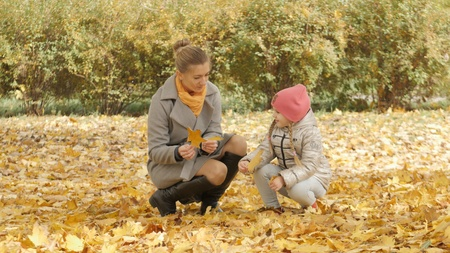Mom and baby collect yellow leaves in the park 스톡 콘텐츠