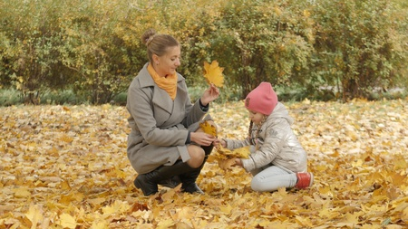 Mom and baby collect yellow leaves in the park. mom kisses her daughter