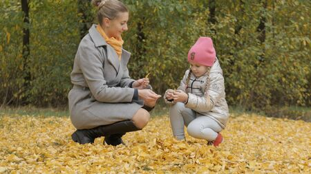 Mom and Little Daughter Collect Yellow Fallen Leaves in Autumn 스톡 콘텐츠