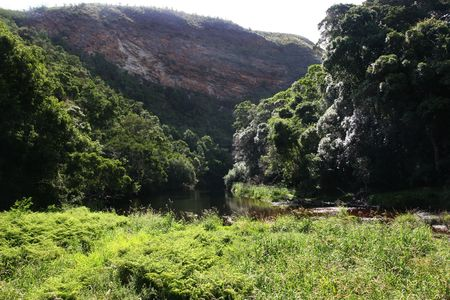 natures: NATURES VALLEY, SOUTH AFRICA