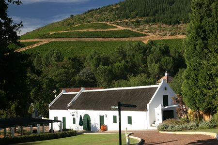 WINE ROUTE, SOUTH AFRICA