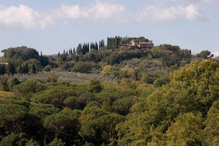 vineyard plain: tuscany property