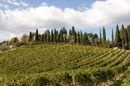 tuscany nature Stock Photo