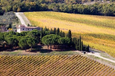 nature de la Toscane  Banque d'images