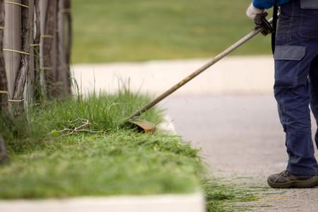 brush cutting