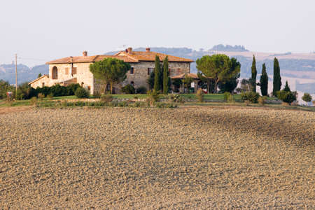vineyard plain: Val dOrcia area