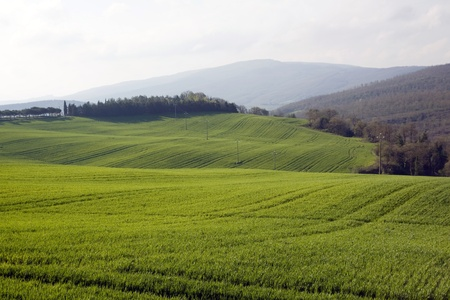landscapes photo