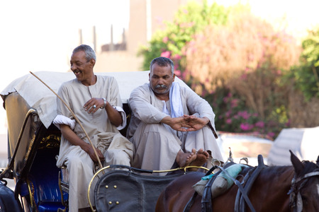 renter: luxor cart renter at rest, egypt