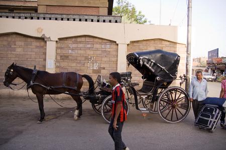 renter: aswan, cart renter egypt