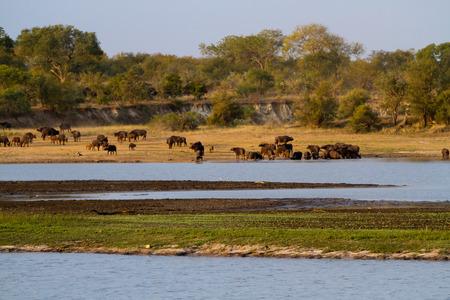 africa landscape photo