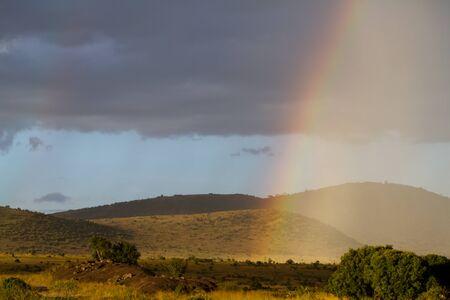the mara: masai mara rainbow